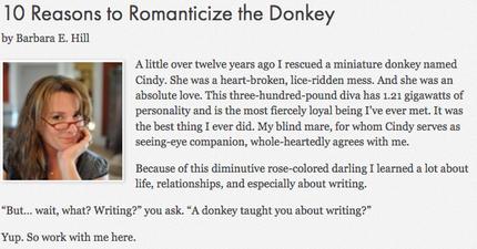 Screenshot-2018-2-12 10 Reasons to Romanticize the Donkey - SFWA