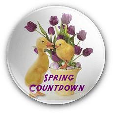 Spring CDB