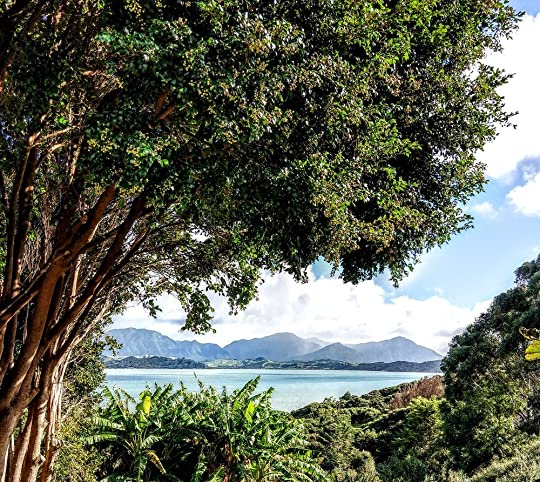 Overlooking Hokianga harbor, near Koutu Boulders, Northland NZ