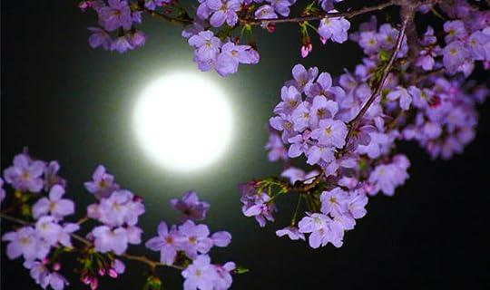 Flower Moon 2-18 shining through some trees
