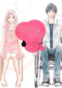 perfectworldcover