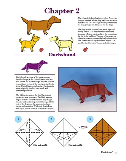 Dogs In Origami 30 Breeds From Terriers To Hounds