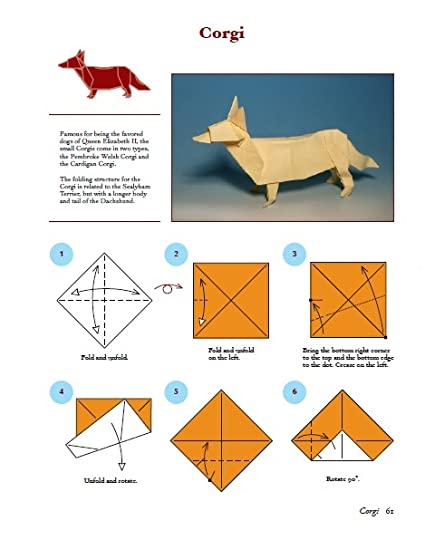 Surprising Dogs In Origami 30 Breeds From Terriers To Hounds By John Montroll Wiring 101 Israstreekradiomeanderfmnl