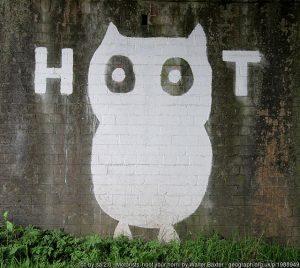 jeff bezos give a hoot
