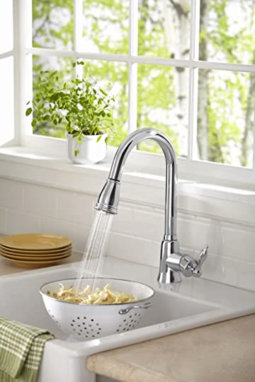 Danze Prince single handle pull down kitchen faucet