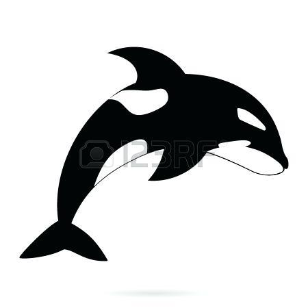 black and white whale vector monochrome killer outline illustration isolated on background blue clipart