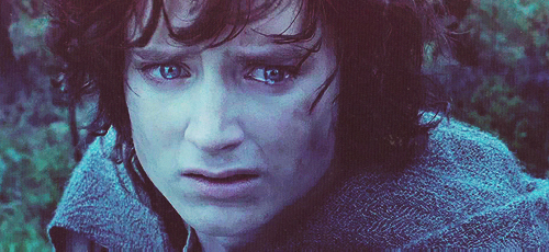 Image result for frodo crying