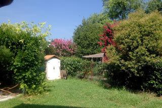 Antonella Moretti S Blog