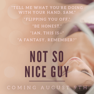 Not So Nice Guy by R S  Grey