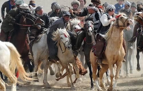 photo AfghanistanHorses_zps27fd2204.jpg