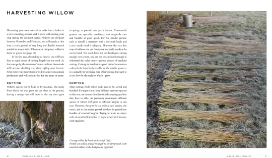 Laura (Boulder Creek, CA)'s review of Willow: Traditional Craft for