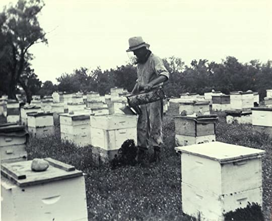 My great-uncle Will Bostick with his bees in Uvalde County