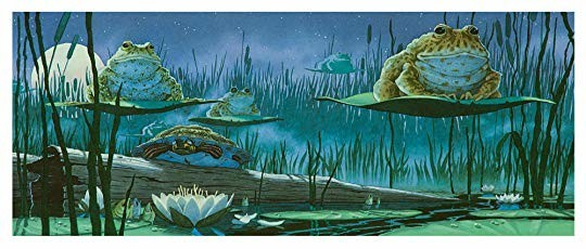 Image result for tuesday by david wiesner