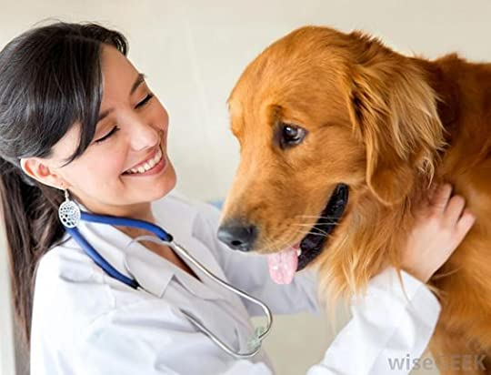 female veterinarians