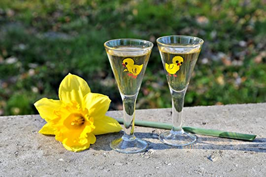 Daffodil flower and two glasses of Easter schnapps