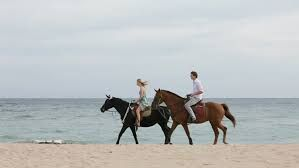 couple riding horses on the beach