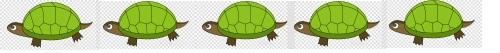 tortoise line