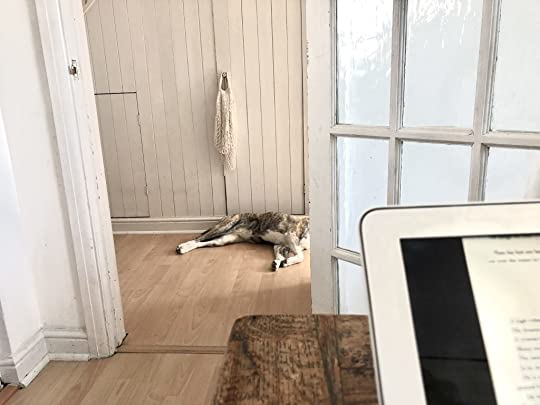 Photo of the view from a dining table showing a part-visible dog lying on the hallway floor