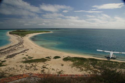 Sea Fishing BTY Alice Hickey FreeSpirit Ocean Fishermen Coral Blue