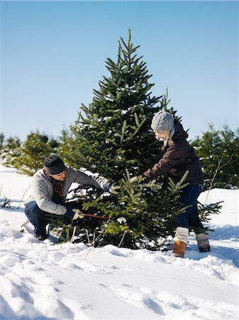 couple cutting down a christmas tree in the snow - Google Search