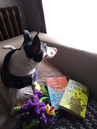 Rat terrier, and two Sarah Pinsker books: A Song For A New Day and Sooner or Later Everything Falls into the Sea