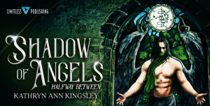 Shadow of Angels Banner