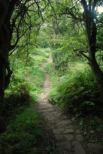 File:Ancient pathway towards Chatsworth Park - geograph.org.uk - 553964.jpg