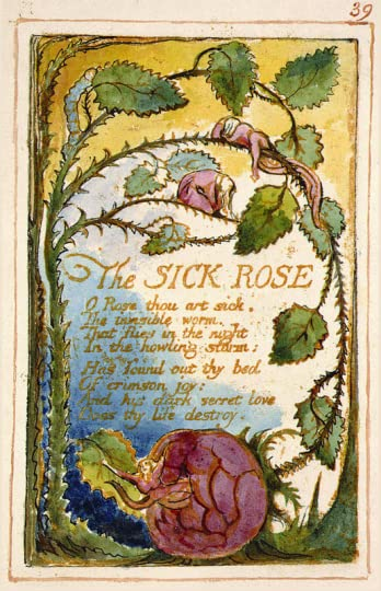 800px-Songs-of-innocence-and-of-experience-page-39-The-Sick-Ro