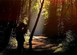 young couple kissing in the forest sunbeam - Google Search