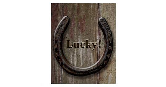 Image result for horseshoe above door