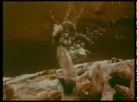 Image result for lemmings cliff