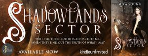 thumbnail_Shadowlands Sector Banner
