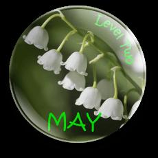 May-B2