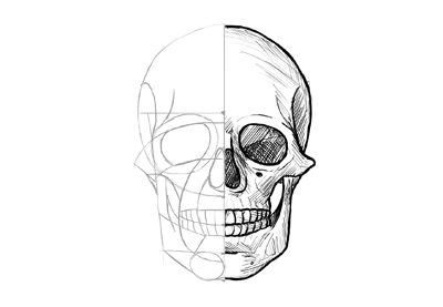 Anthem Skull Pictures To Draw Showing 1 1 Of 1