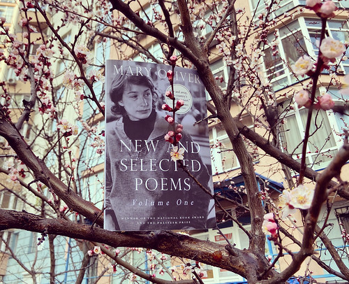 ew and Selected Poems book by Mary Oliver