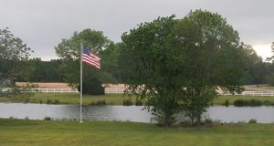 Image: American flag flying beside a pond