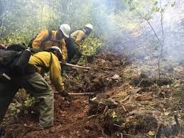 working a fire line - Google Search