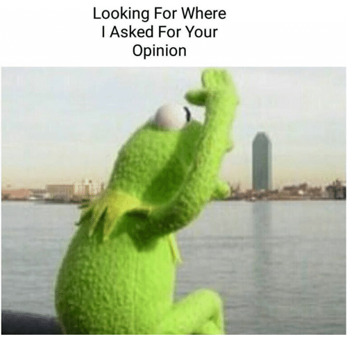 Looking for Where I Asked for Your Opinion | Kermit the Frog Meme on ME.ME