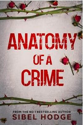 Anatomy of a Crime by Sibel Hodge