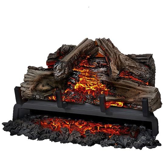 Napoleon Woodland 24-Inch Electric Fireplace Insert/Log ...
