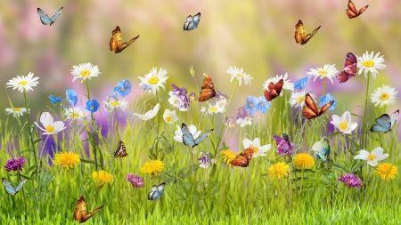 Spring Meadow - Desktop Nexus Wallpapers | Flower wallpaper, Hd cool wallpapers, Mobile wallpaper