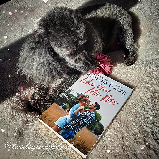 A cute dog with a copy of the book entitled Like You Love Me by Adriana Locke