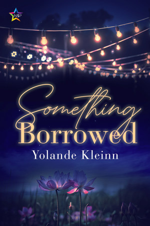 Book cover: gold font on a night sky below a string of soft lights, Something Borrowed