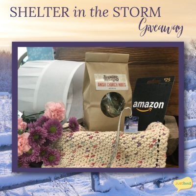 Shelter in the Storm JustRead Giveaway