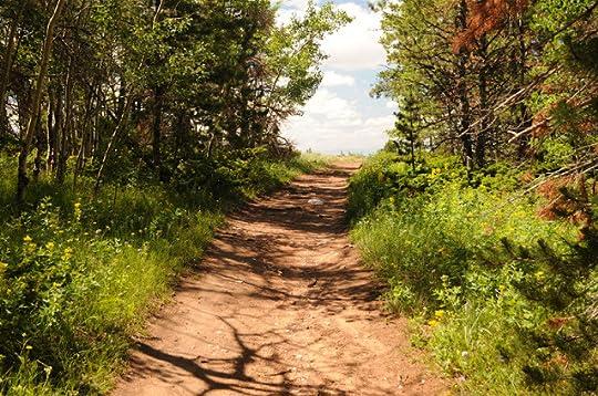 trail at Pole Mountain