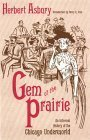Gem of the Prairie: An Informal History of the Chicago Underworld  by  Herbert Asbury