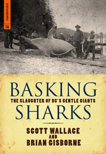 Basking Sharks: The Slaughter of BCs Gentle Giants  by  Scott Wallace
