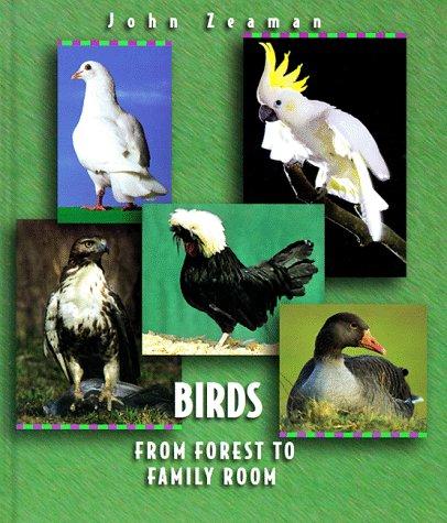 Birds John Zeaman