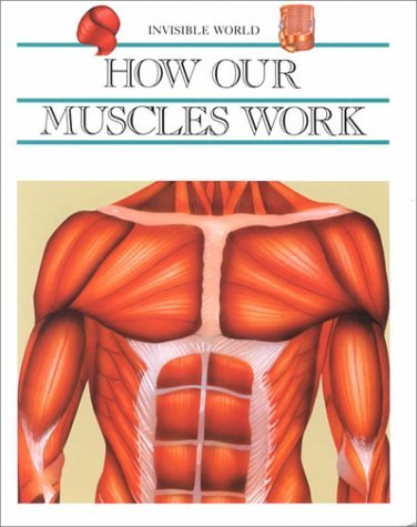 How Our Muscles Work  by  Victoria J. Avila
