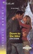 Down to the Wire (Special Ops #1)  by  Lyn Stone